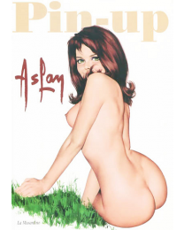 Livre Pin-up